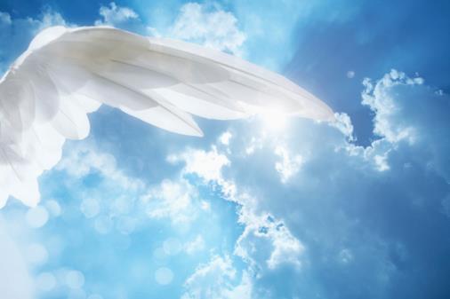 Canalizzazione Vibrazionale Angelica: quello che dovresti sapere sul tuo cammino, svelato dagli Angeli – TOUR